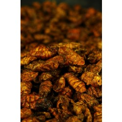 Black Fly Larvae 400ml